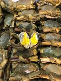超級爆膏奄仔蟹,約3兩左右1隻。